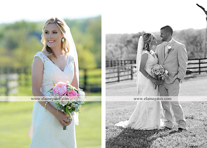 Lauxmont Farms wedding photographer Cobblestone Courtyard Wrightsville pa pink B&B Light and Sound Dickey's Aulestia David's Bridal Men's Wearhouse roman jewelers gordon's 53