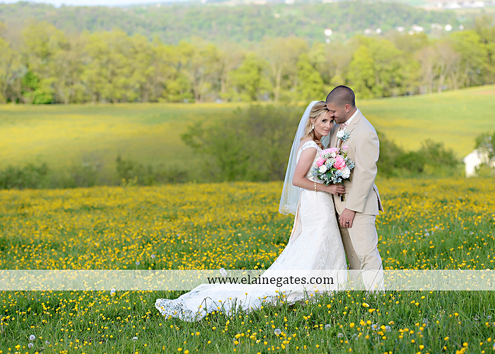 Lauxmont Farms wedding photographer Cobblestone Courtyard Wrightsville pa pink B&B Light and Sound Dickey's Aulestia David's Bridal Men's Wearhouse roman jewelers gordon's 59