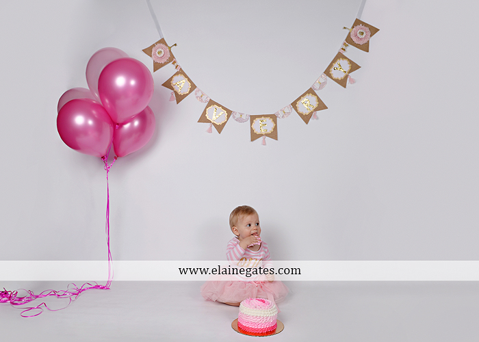 Mechanicsburg Central PA baby child portrait photographer girl outdoor indoor mom mother bench one year old birthday tutu balloons banner cake smash eat jt 6