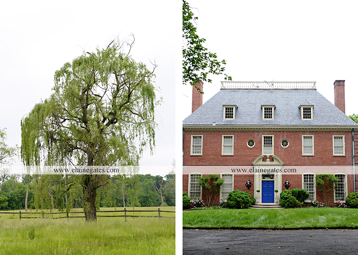 Mechanicsburg Central PA venue photographer outdoor business venue chilton weddings gatherings celebrations historical architecture outdoor events farm pool iron gates plants trees flowers 03