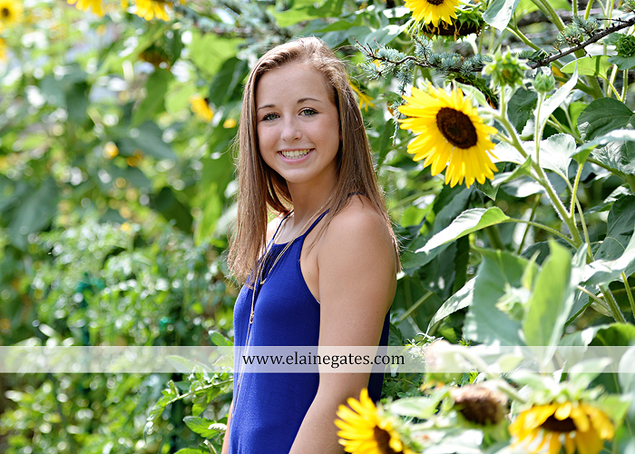 mechanicsburg-central-pa-senior-portrait-photographer-outdoor-female-girl-formal-wooden-swing-grass-hammock-road-field-fence-tree-water-creek-stream-sunflowers-wildflowers-td-09