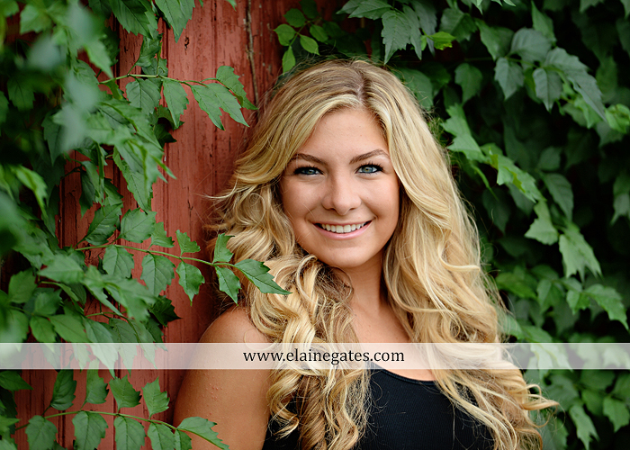 mechanicsburg-central-pa-senior-portrait-photographer-outdoor-female-girl-swing-tree-bench-hammock-grass-road-field-rock-water-creek-stream-fence-ivy-brick-wall-sidewalk-house-door-pw-09