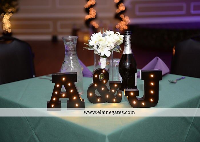 hershey-italian-lodge-wedding-photographer-purple-green-blue-dj-mad-hatter-costco-sublime-cupcakes-shades-of-pink-wedding-paper-divas-bombshell-brides-davids-bridal-vanscoy-maurer-bash-33