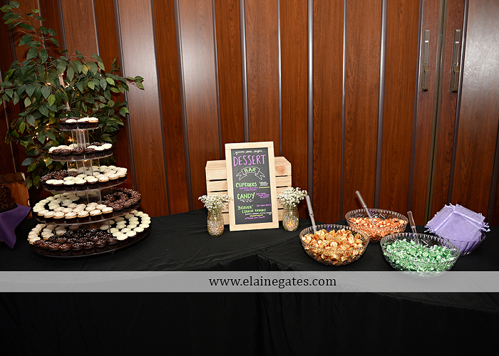 hershey-italian-lodge-wedding-photographer-purple-green-blue-dj-mad-hatter-costco-sublime-cupcakes-shades-of-pink-wedding-paper-divas-bombshell-brides-davids-bridal-vanscoy-maurer-bash-34