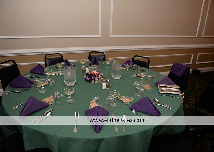 hershey-italian-lodge-wedding-photographer-purple-green-blue-dj-mad-hatter-costco-sublime-cupcakes-shades-of-pink-wedding-paper-divas-bombshell-brides-davids-bridal-vanscoy-maurer-bash-37