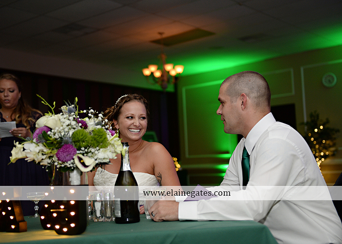 hershey-italian-lodge-wedding-photographer-purple-green-blue-dj-mad-hatter-costco-sublime-cupcakes-shades-of-pink-wedding-paper-divas-bombshell-brides-davids-bridal-vanscoy-maurer-bash-42