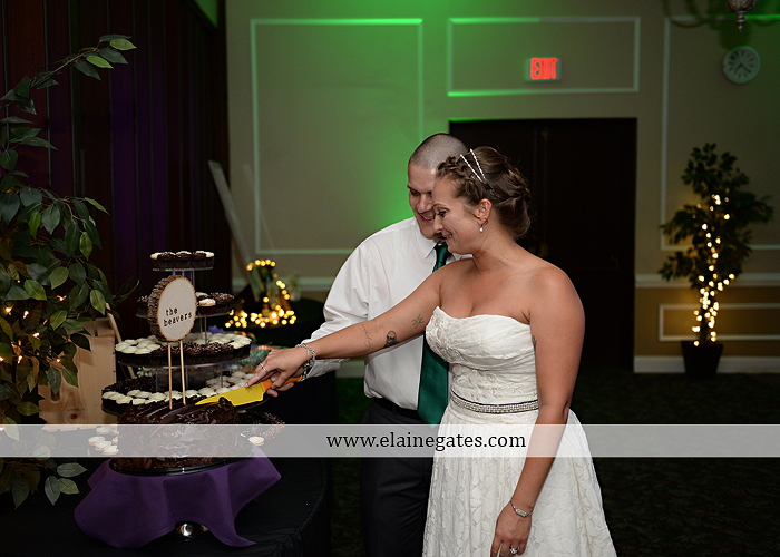 hershey-italian-lodge-wedding-photographer-purple-green-blue-dj-mad-hatter-costco-sublime-cupcakes-shades-of-pink-wedding-paper-divas-bombshell-brides-davids-bridal-vanscoy-maurer-bash-43