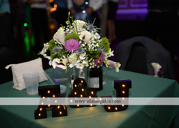 hershey-italian-lodge-wedding-photographer-purple-green-blue-dj-mad-hatter-costco-sublime-cupcakes-shades-of-pink-wedding-paper-divas-bombshell-brides-davids-bridal-vanscoy-maurer-bash-45