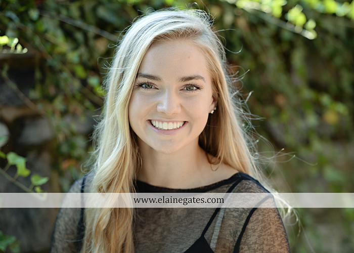mechanicsburg-central-pa-senior-portrait-photographer-outdoor-female-girl-formal-swing-hammock-brick-wall-stone-wall-steps-bridge-road-beams-covered-bridge-messiah-college-wildflowers-nl06