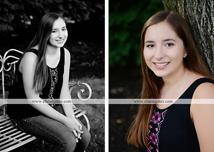 central pa senior portrait photographer bench tree flute music stream creek art sketch wildflowers stone stairs horse stable barn hw 1