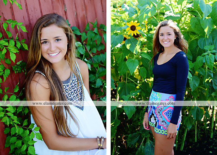 central pa senior portrait photographer trees hammock brick wall bench wildflowers water stream creek sunflowers fence road ts 5