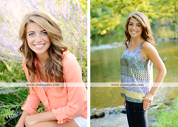 central pa senior portrait photographer wildflowers stream creek water rock fence grass hg 1