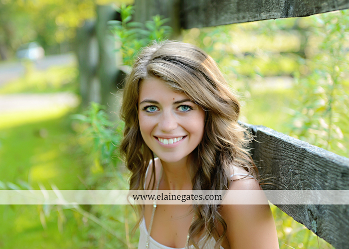 central pa senior portrait photographer wildflowers stream creek water rock fence grass hg 4
