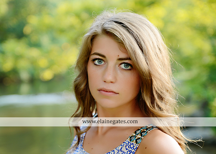 central pa senior portrait photographer wildflowers stream creek water rock fence grass hg 6