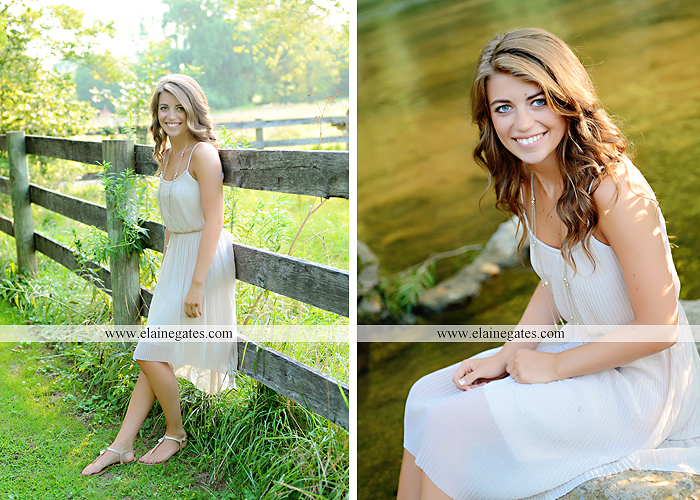 central pa senior portrait photographer wildflowers stream creek water rock fence grass hg 7