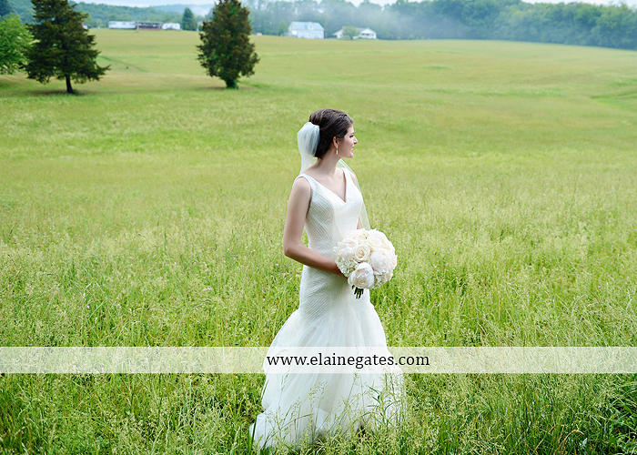 Liberty Forge Wedding Photographer May pink Mechanicsburg PA Altland House caterer Wedding and Blooms Floral Studio Amy's Cakery Titus Touch Music DJ Entertainment David's Bridal Men's Wearhouse 43
