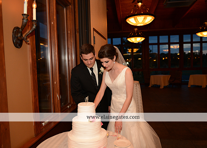 Liberty Forge Wedding Photographer May pink Mechanicsburg PA Altland House caterer Wedding and Blooms Floral Studio Amy's Cakery Titus Touch Music DJ Entertainment David's Bridal Men's Wearhouse 71