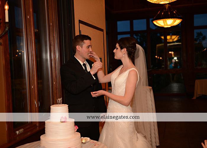 Liberty Forge Wedding Photographer May pink Mechanicsburg PA Altland House caterer Wedding and Blooms Floral Studio Amy's Cakery Titus Touch Music DJ Entertainment David's Bridal Men's Wearhouse 74