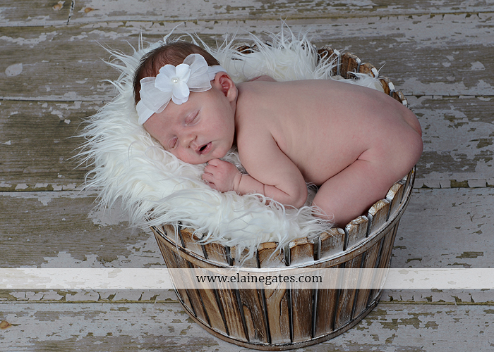 Mechanicsburg Central PA newborn portrait photographer girl outdoor sleeping hat bow blanket basket wooden floor pink white tutu mother father parents grass trees 03