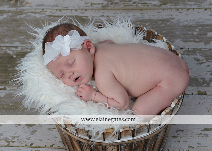 Mechanicsburg Central PA newborn portrait photographer girl outdoor sleeping hat bow blanket basket wooden floor pink white tutu mother father parents grass trees 04