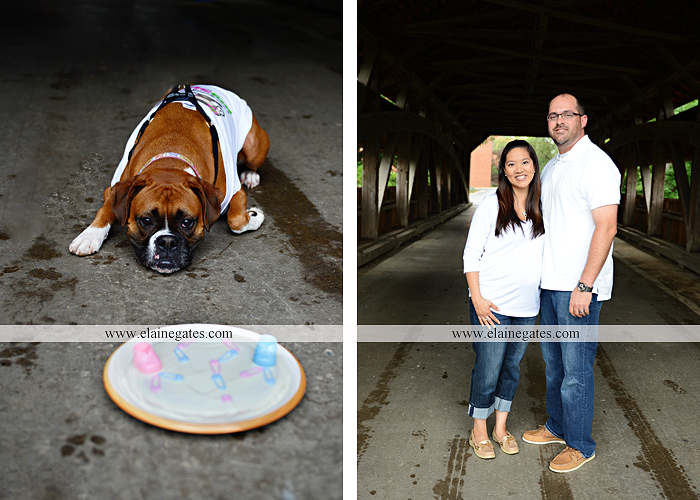 Mechanicsburg Central PA portrait photographer outdoor gender reveal dog cake covered bridge baby girl boy pink blue sonogram balloons 01