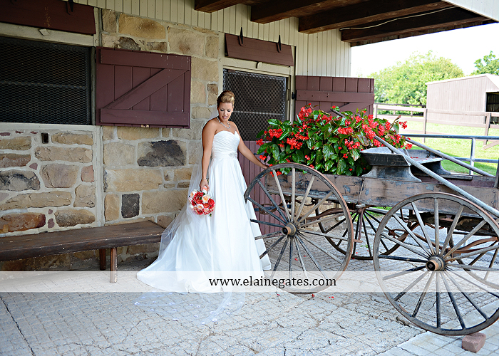 Lakeview Farms wedding photographer Dover pa tan pink Mixed-Up Productions Shearer's Florist Rock, Paper, Scissors J & D Bridals J. Crew Mountz 036