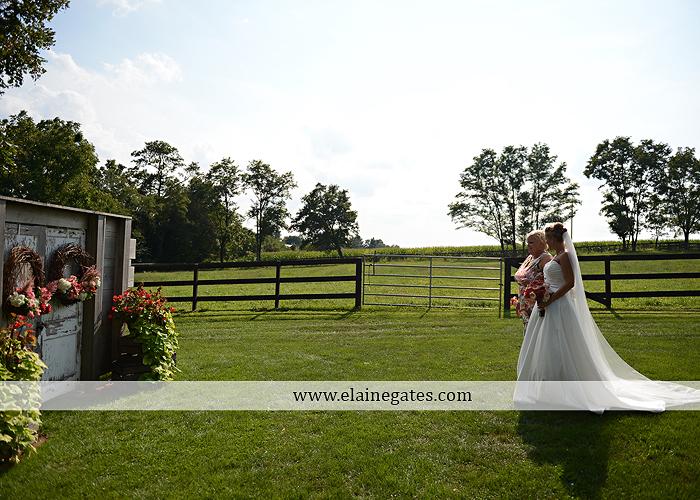 Lakeview Farms wedding photographer Dover pa tan pink Mixed-Up Productions Shearer's Florist Rock, Paper, Scissors J & D Bridals J. Crew Mountz 046