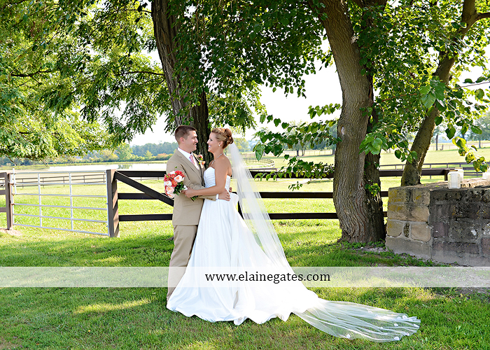 Lakeview Farms wedding photographer Dover pa tan pink Mixed-Up Productions Shearer's Florist Rock, Paper, Scissors J & D Bridals J. Crew Mountz 057