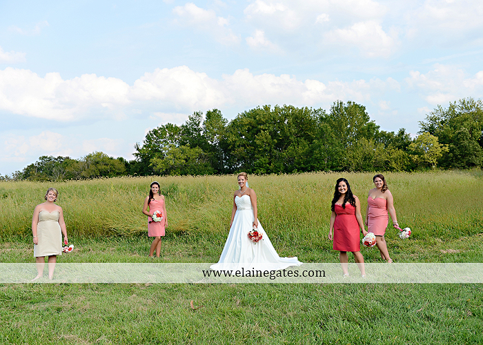 Lakeview Farms wedding photographer Dover pa tan pink Mixed-Up Productions Shearer's Florist Rock, Paper, Scissors J & D Bridals J. Crew Mountz 062