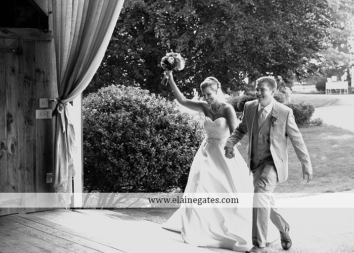 Lakeview Farms wedding photographer Dover pa tan pink Mixed-Up Productions Shearer's Florist Rock, Paper, Scissors J & D Bridals J. Crew Mountz 080