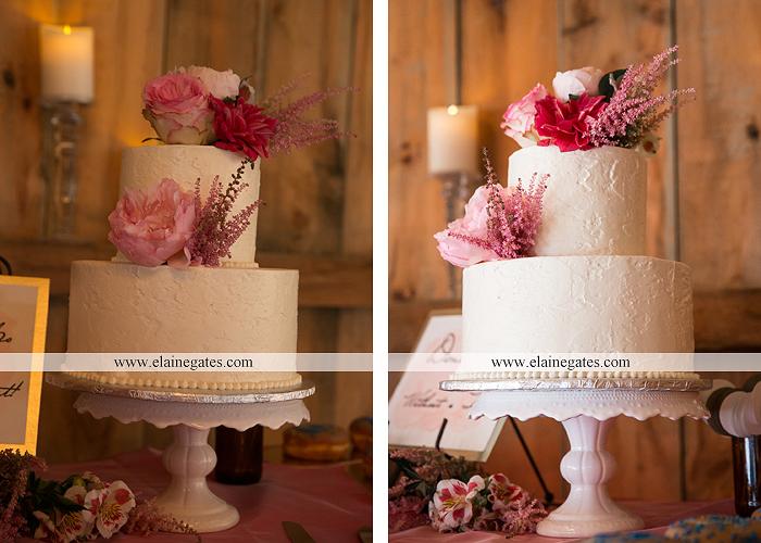 Lakeview Farms wedding photographer Dover pa tan pink Mixed-Up Productions Shearer's Florist Rock, Paper, Scissors J & D Bridals J. Crew Mountz 083