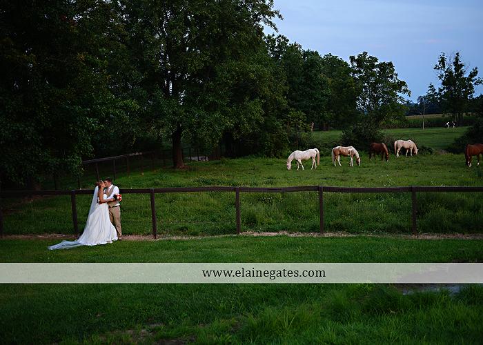 Lakeview Farms wedding photographer Dover pa tan pink Mixed-Up Productions Shearer's Florist Rock, Paper, Scissors J & D Bridals J. Crew Mountz 089