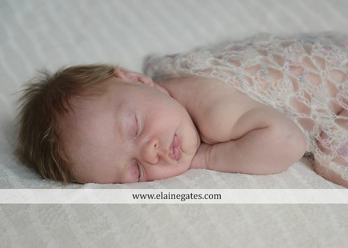 Mechanicsburg Central PA newborn baby portrait photographer girl sleeping indoor blanket bow basket tutu knit hat grass ns 03