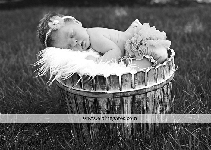 Mechanicsburg Central PA newborn baby portrait photographer girl sleeping indoor blanket bow basket tutu knit hat grass ns 09