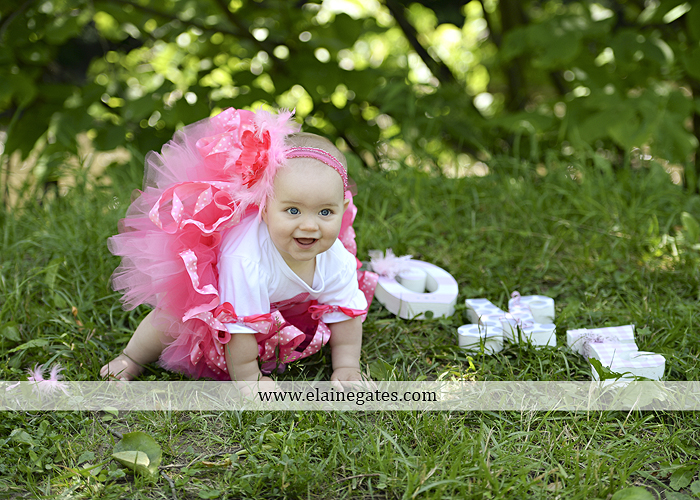 Mechanicsburg Central PA baby child portrait photographer girl outdoor road mother father grass trees tutu 1st birthday one year old water stream creek mb 9