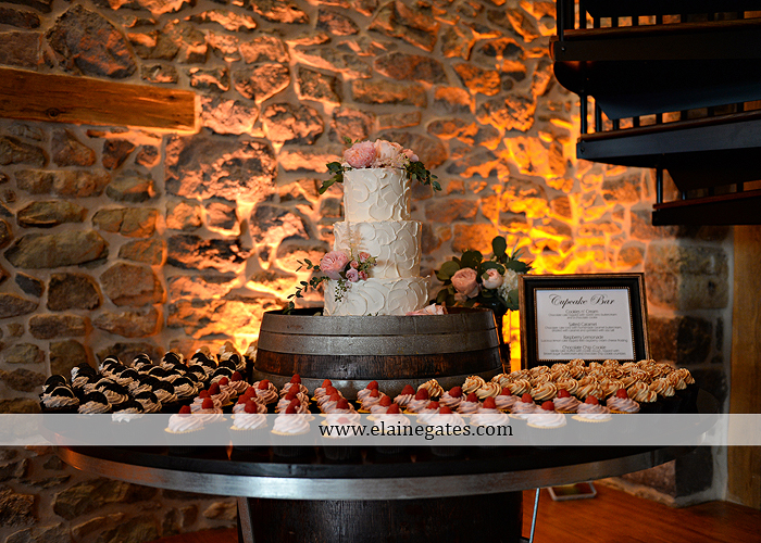 Harvest View Barn wedding photographer hershey farms pa planned perfection klock entertainment legends catering petals with style cocoa couture men's wearhouse david's bridal key jewelers30