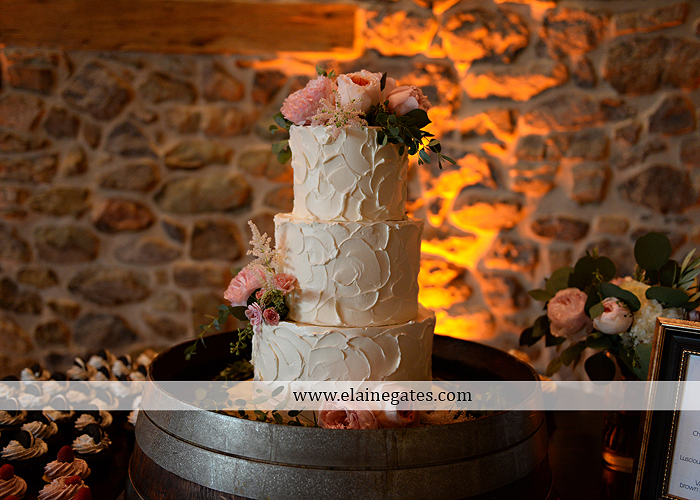 Harvest View Barn wedding photographer hershey farms pa planned perfection klock entertainment legends catering petals with style cocoa couture men's wearhouse david's bridal key jewelers32