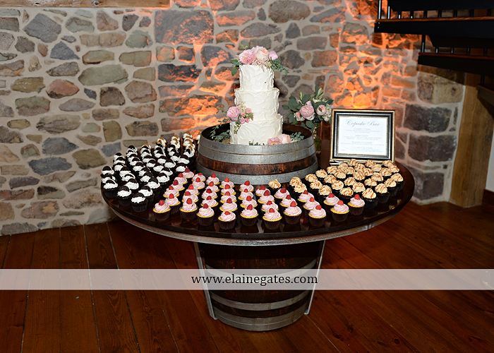 Harvest View Barn wedding photographer hershey farms pa planned perfection klock entertainment legends catering petals with style cocoa couture men's wearhouse david's bridal key jewelers58