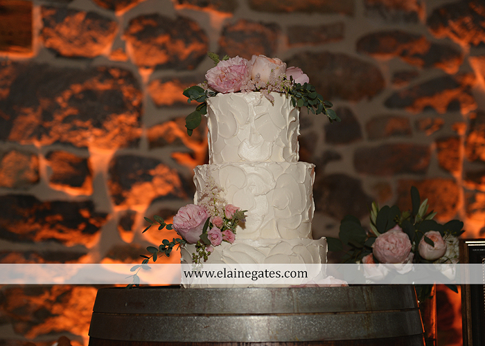Harvest View Barn wedding photographer hershey farms pa planned perfection klock entertainment legends catering petals with style cocoa couture men's wearhouse david's bridal key jewelers59