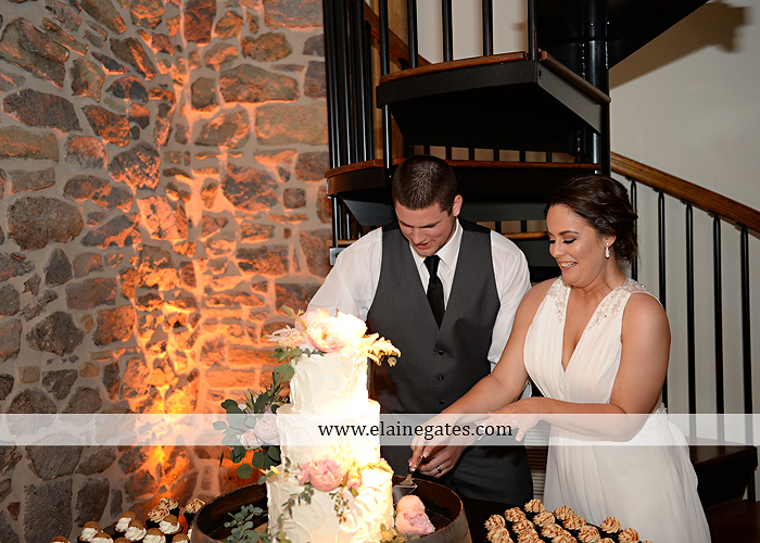 Harvest View Barn wedding photographer hershey farms pa planned perfection klock entertainment legends catering petals with style cocoa couture men's wearhouse david's bridal key jewelers63