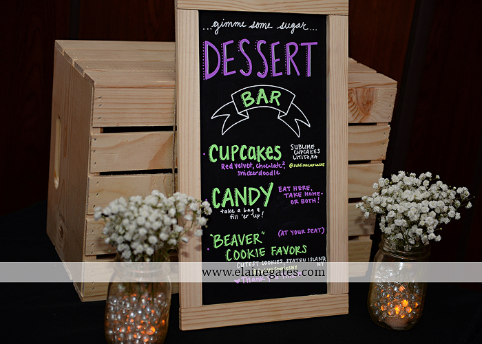 Hershey Italian Lodge Wedding Photographer Purple Green Blue